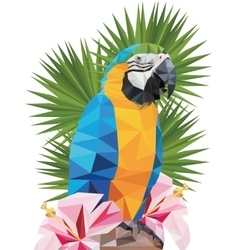 Tropical triangular macaw parrot with vector
