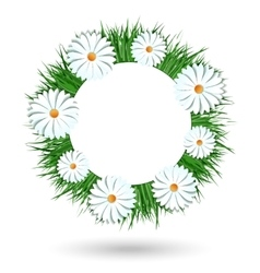 Camomile wreath isolated on white background vector image vector image