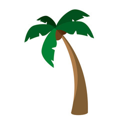 Island tree palms vector