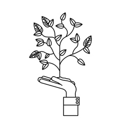 Plant over hand design vector