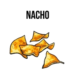Nachos traditional mexican food made vector