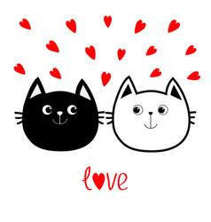 black white contour cat head couple family icon vector image