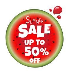 Watermelon sale poster vector