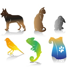 Color pet vector