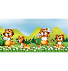 Four tigers in the flower field vector image