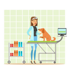 cheerful veterinary doctor examining dog in vet vector image