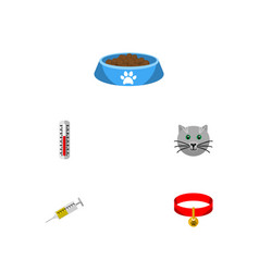 flat icon animal set of vaccine kitty cat eatin vector image vector image