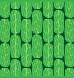 green banana leaves pattern vector image