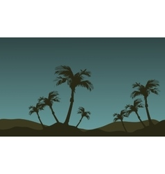 Scenery of palm tree silhouette vector image