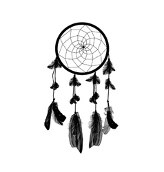 Naturalistic Black Dreamcatcher Isolated on White vector image