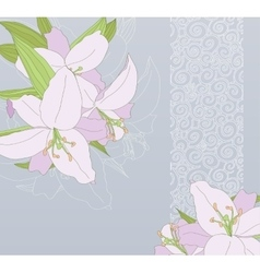 Card with lilies on blue background vector image vector image