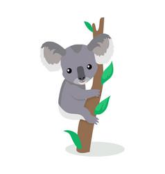 Koala cartoon flat vector