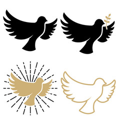 set of dove icons pigeon with a laurel branch vector image vector image