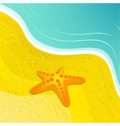 starfish and beach vector image vector image