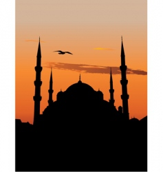 Mosque in istanbul vector