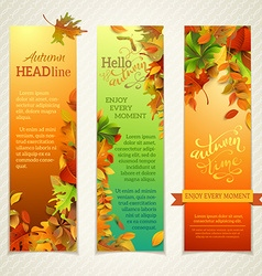 Set of bright vertical autumn banners vector