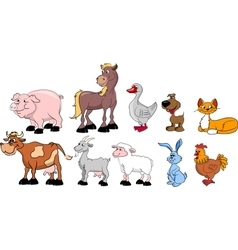 Big set of domestic animals vector