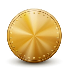 One big golden coin vector