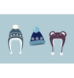 Set Winter Hat vector image vector image
