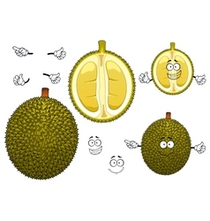 Thai smelly green durian fruit vector