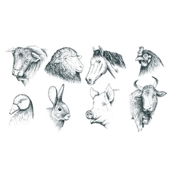 Collection of farm animals handcrafted vector