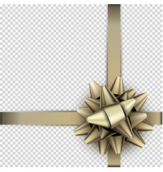 Golden bow with ribbon for gift wrap vector