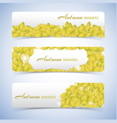 Autumn leaves banner set vector