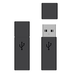 Usb flash drives vector