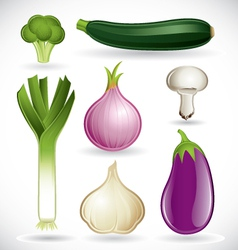Mixed vegetables - set 2 of 2 vector