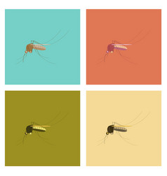 Assembly flat icons insect mosquito vector