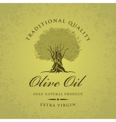 Olive tree and olive oil vector
