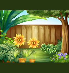 scene with sunflowers in garden vector image vector image