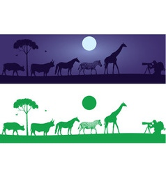 Beautiful wild animals wall decal vector