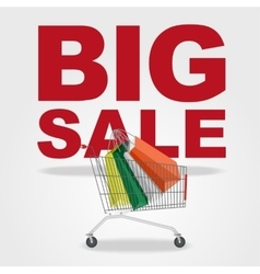 big sale and shopping cart vector image