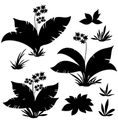 Exotic plants flowers and grass vector