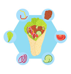 Shawarma ingredients flat style vector
