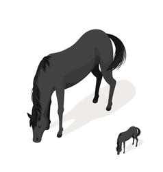 Isometric 3d black horse vector