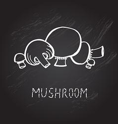 Hand drawn mushrooms vector