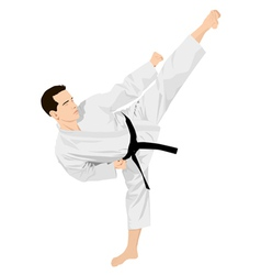 Karateka vector image