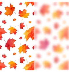 Watercolor painted maple leaves background with vector image vector image