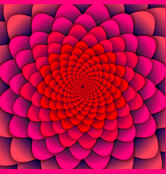 abstract background pink spiral flower pattern vector image