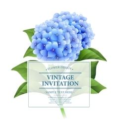 Invitation card blue hydrangea flowers vintage vector