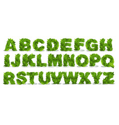 Green leaf fonts vector