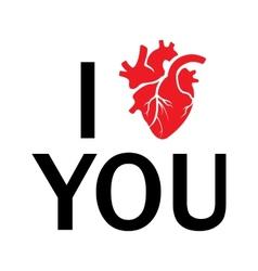 i love you human heart vector image vector image