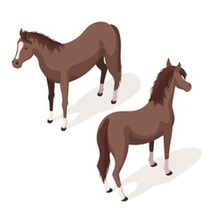 Isometric 3d of brown sorrel horses vector image vector image