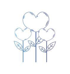line beauty heart plants with leaves design vector image vector image