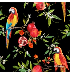 Tropical Flowers Pomegranates and Parrot Birds vector image