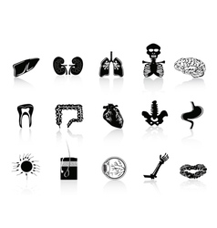 black human anatomy icon vector image vector image