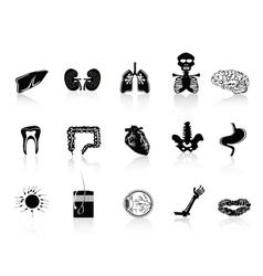 Black human anatomy icon vector