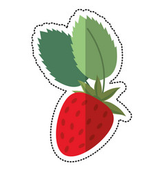 Cartoon strawberry sweet vitamin nature vector
